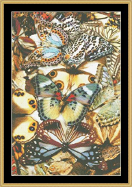 Butterfly Collage - Cross Stitch Pattern Download | Crafting | Cross-Stitch | Other
