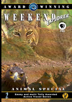 weekend explorer  animal special