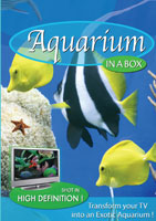 Aquarium In A Box | Movies and Videos | Action