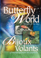 Butterfly World Jewels Of The Sky | Movies and Videos | Action