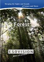 ESOVISION Relaxation  FOREST | Movies and Videos | Action