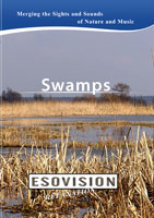 ESOVISION Relaxation  SWAMPS | Movies and Videos | Action
