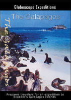 The Galapagos | Movies and Videos | Action