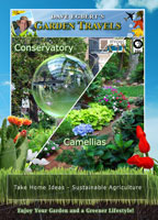Garden Travels  Conservatory / Camellias | Movies and Videos | Action