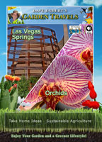 Garden Travels  Las Vegas Springs / Orchids | Movies and Videos | Action