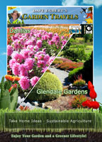 Garden Travels  Dahlias / Glendale Gardens | Movies and Videos | Action