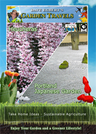Garden Travels  Heucheras / Portland Japanese Garden | Movies and Videos | Action