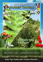 Garden Travels  Fancy Ferns / Western Hills Nursery | Movies and Videos | Action