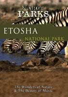 nature parks  etosha national park namibia