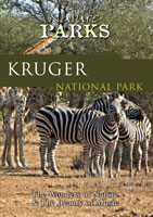 Nature Parks  KRUGER NATIONAL PARK South Africa | Movies and Videos | Action