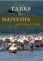 nature parks  naivasha lake kenya