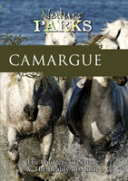 Nature Parks  CAMARGUE Provence, France | Movies and Videos | Action