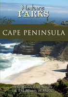 nature parks  cape peninsula south africa