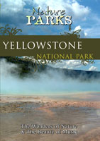 Nature Parks  YELLOWSTONE NATIONAL PARK Wyoming | Movies and Videos | Action