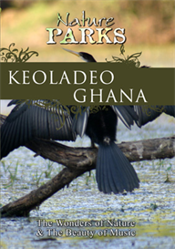 Nature Parks  KEOLADEO GHANA Rajasthan / India | Movies and Videos | Action