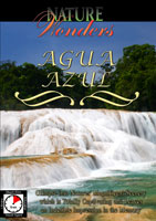 Nature Wonders  AGUA AZUL Chiapas Mexico | Movies and Videos | Action