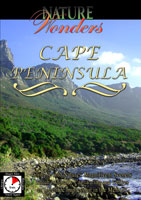 nature wonders  cape peninsula south africa