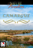 Nature Wonders  CAMARGUE Provence, France | Movies and Videos | Action