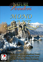 Nature Wonders  MONO LAKE California U.S.A. | Movies and Videos | Action