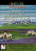 Nature Wonders  LAKE BOGORIA Kenya | Movies and Videos | Action