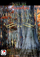 Nature Wonders  LOUISIANA SWAMPS U.S.A. | Movies and Videos | Action