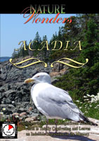 Nature Wonders  ACADIA Maine U.S.A. | Movies and Videos | Action