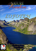 Nature Wonders  LOFOTEN Norway | Movies and Videos | Action