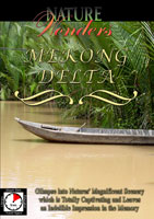 Nature Wonders  MEKONG DELTA Vietnam | Movies and Videos | Action