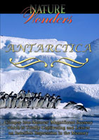 Nature Wonders  ANTARCTICA | Movies and Videos | Action