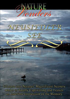 Nature Wonders  NEUSIEDLER SEE Austria | Movies and Videos | Action