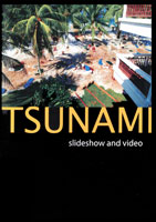 Tsunami | Movies and Videos | Action