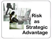 strategic risk management***plus bonus materials
