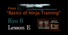 Ninjutsu 6th Kyu Lesson E - ROKUSHAKUBO - KAMAE BOW ROLL - Basics of Ninja Training
