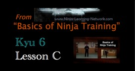 Ninjutsu 6th Kyu Lesson C - GYAKU WAZA - Basics of Ninja Training