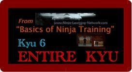 Ninjutsu / Bujinkan 6th Kyu - LARGE MOVIE VERSION - Basics of Ninja Training | Movies and Videos | Sports