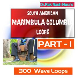 South American Marimbula - Part - 1 | Music | Soundbanks
