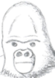 Gorilla - tif pc | Other Files | Clip Art