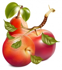 Vectorlib RF (Standard License): Vector. Ripe red apples and pear with green leaves.