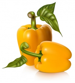 Vectorlib RF (Standard License): Vector illustration of yellow sweet peppers with leaves.