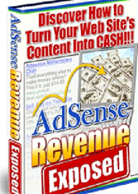 Adsense Revenue Revealed | eBooks | Internet