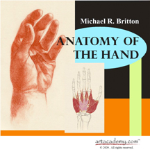 Anatomy of the Hands PDF | eBooks | Education