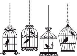 all 4 birdcages in a row