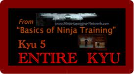 Basics of Ninja Training - 5th KYU - LARGE MOVIES VERSION-  Bujinkan /Ninjutsu | Movies and Videos | Sports