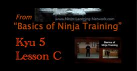 Ninjutsu / Bujinkan - 5th Kyu - Lesson C - NAGE WAZA - &quot;Basics of Ninja Training&quot; Video Black Belt Course