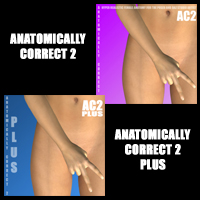anatomically correct 2 bundle