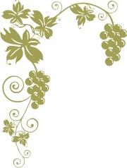 vinecorner - big & small