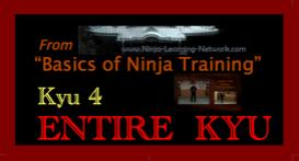 Basics of Ninja Training - 4th Kyu - -LARGE MOVIES VERSION -Bujinkan / Ninjutsu | Movies and Videos | Sports