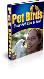 Pet Birds | eBooks | Pets