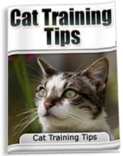 Cat Training Tips | eBooks | Pets