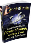 Words to Profits | eBooks | Internet